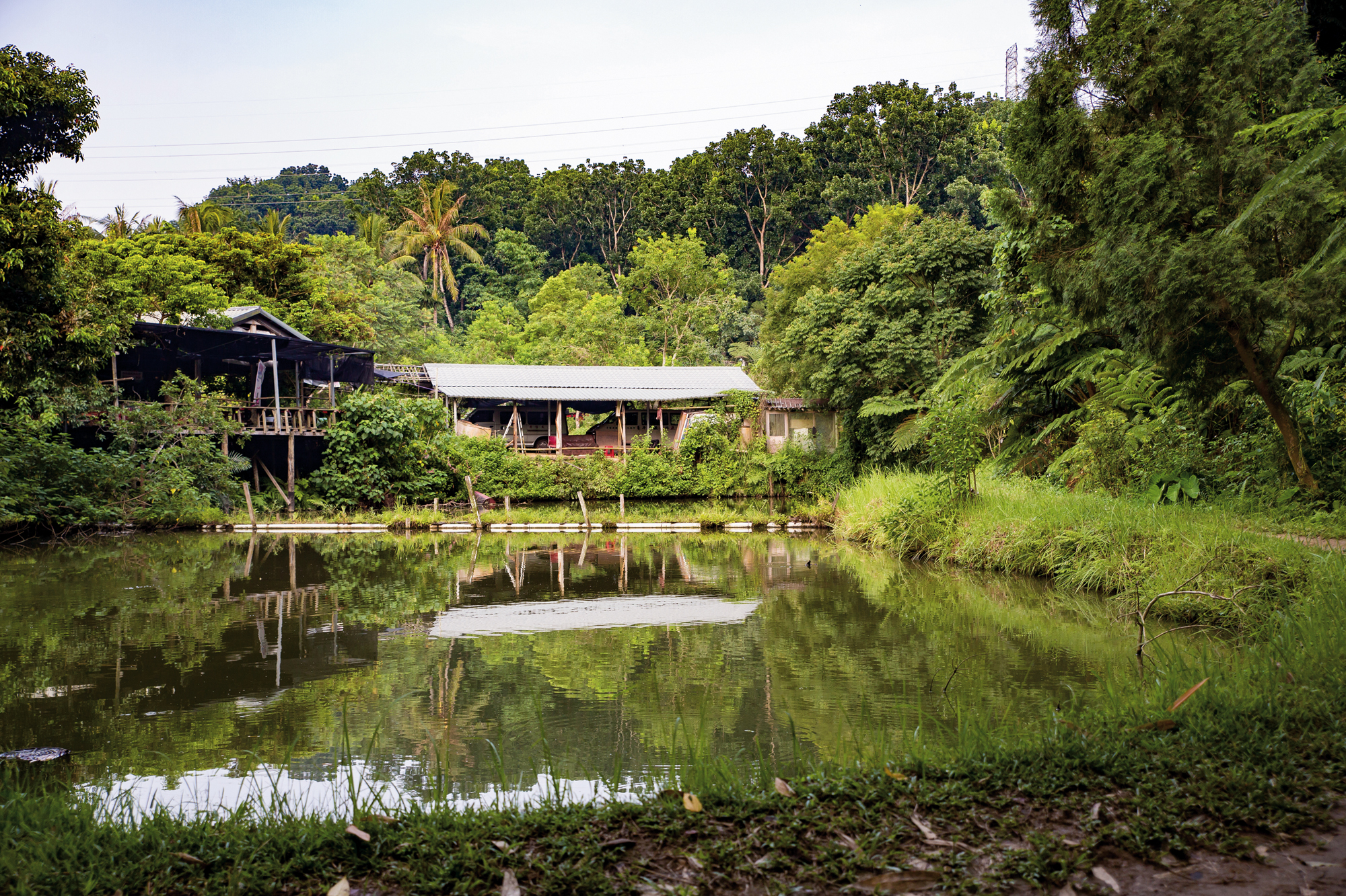 The Green Valley Siraya Park, at Jiucengling in the Xinhua District of Tainan City, is home to Cheng-hiong Talavan, founder of the Siraya Culture Association. It is also the main base of the movement for the Siraya to be officially recognized as one of Taiwan's indigenous peoples.