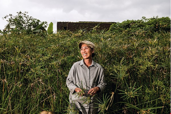 Sumi revived the planting of umbrella sedge and rediscovered traditional weaving techniques of the Amis indigenous people. (photo by Chuang Kung-ju)