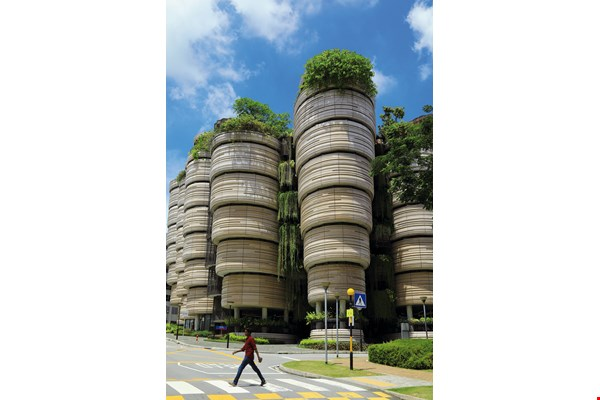 Singapore is an extremely green city with tree-lined streets made for strolling. (photo by Jimmy Lin)