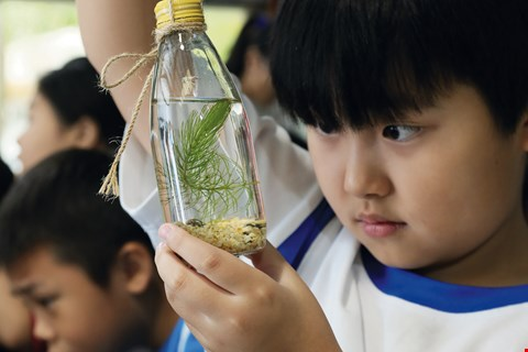 "The curious fourth graders visiting Sheng Yang Leisure Farm from Yilan's Liming Elementary School are making ""bottle ecosystems"" and asking questions as they learn. (photo by Jimmy Lin)"