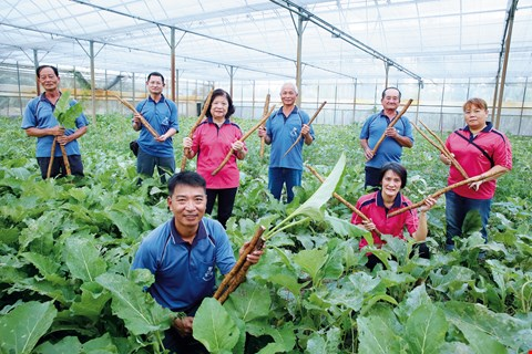 "The members of Pingtung Vegetable Production and Marketing Group 13, led by Carl Chen, hold certifications to use the ""three labels and one code,"" and have founded their own brand, Delisen. (photo by Jimmy Lin)"